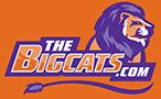 The Big Cats Logo